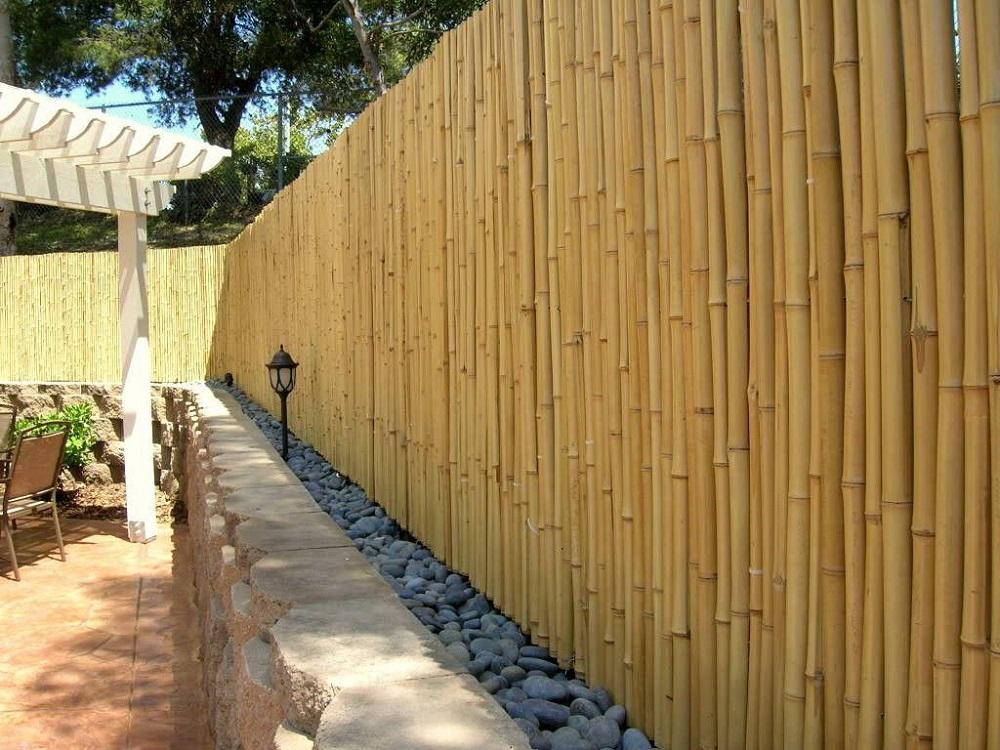 Bambú, una de las ideas de cerramientos para jardín